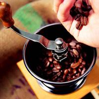 molotu-kavy