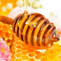 Мед - незамінний продукт на кухні